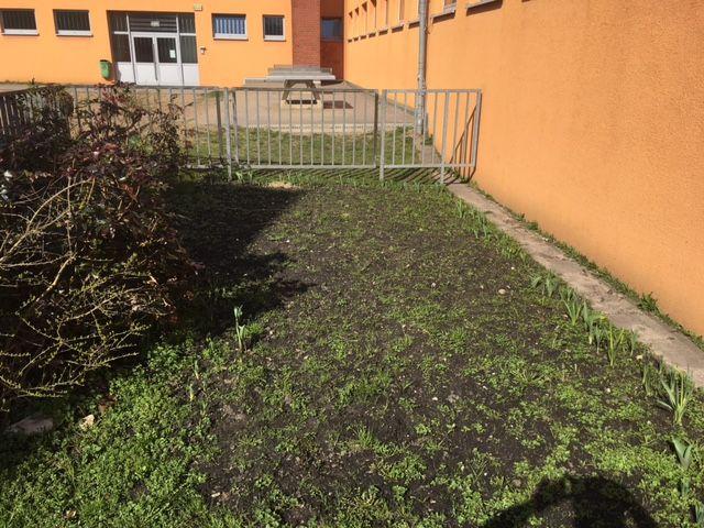 A_Schulgarten_1.jpg