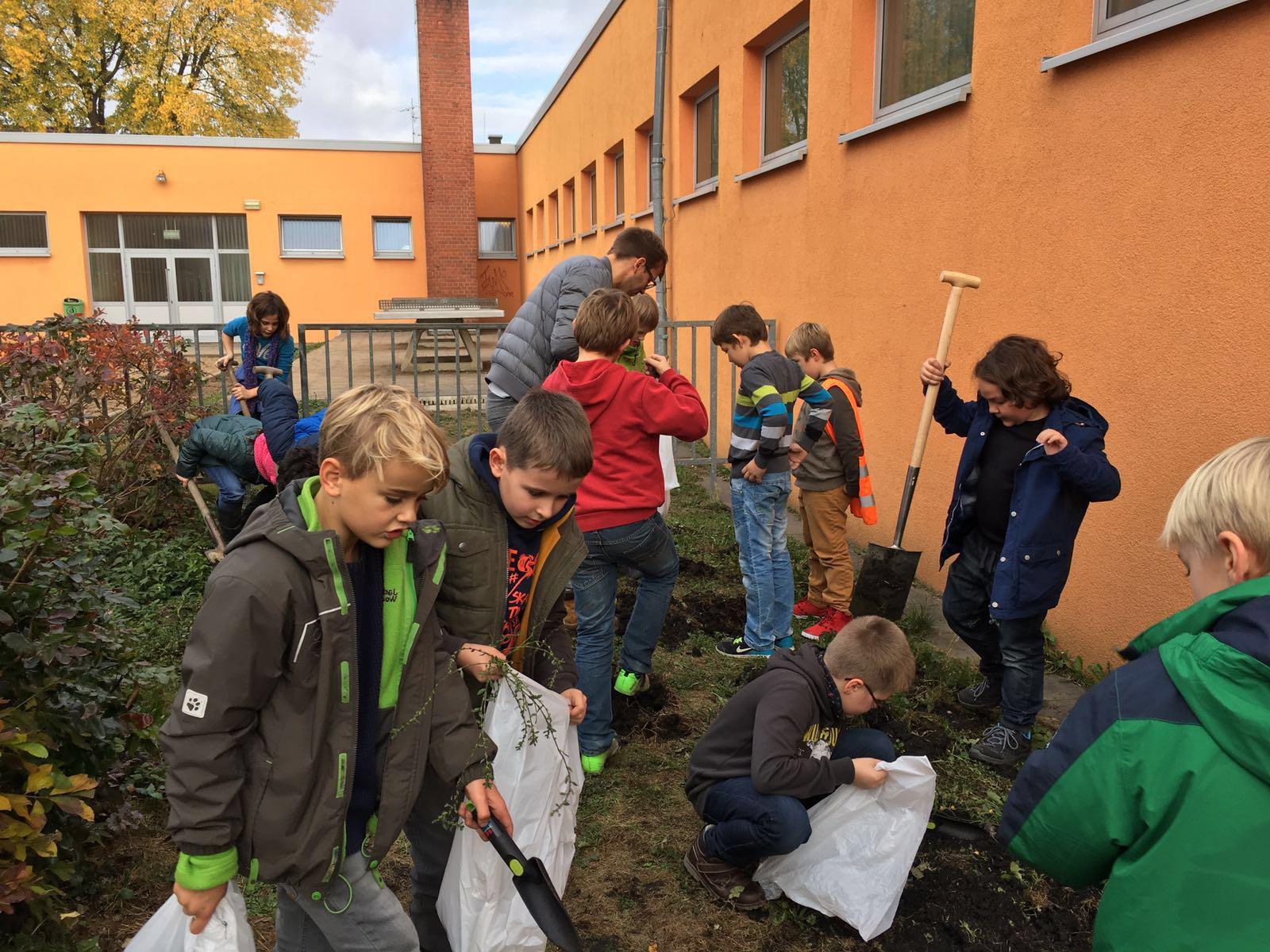 Schulgarten_2.JPG
